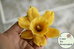 Spring Flowers Tutorial-Gumpaste flowers PDF download