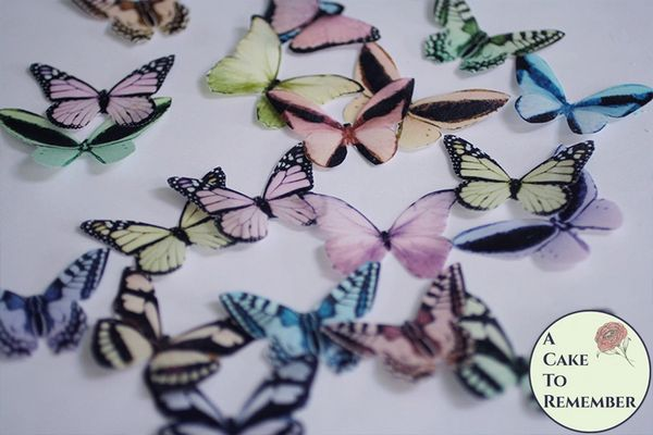 """20 2"""" wide pastel wafer paper butterflies for a rainbow butterfly cake"""