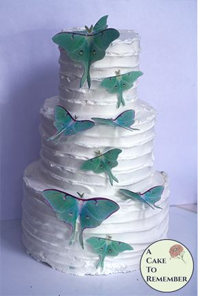 9 green edible luna moths for cake toppers