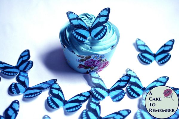 "15 2"" wide royal blue wafer paper edible butterfly cupcake toppers"