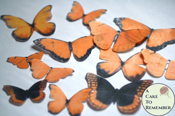 12 large orange wafer paper edible butterflies for cakes