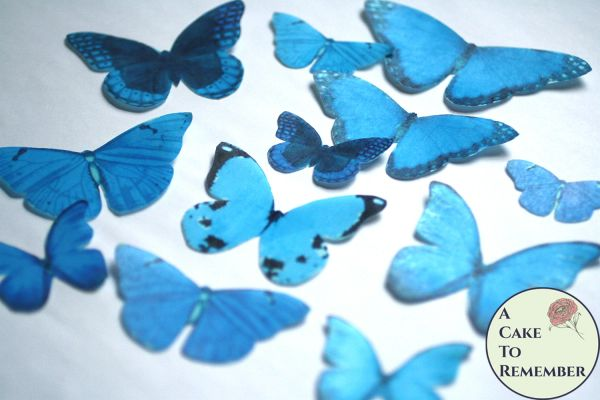 12 large light blue wafer paper edible butterflies for cupcakes