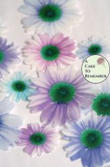 12 daisies edible flowers wafer paper cupcake toppers in shades of lavender