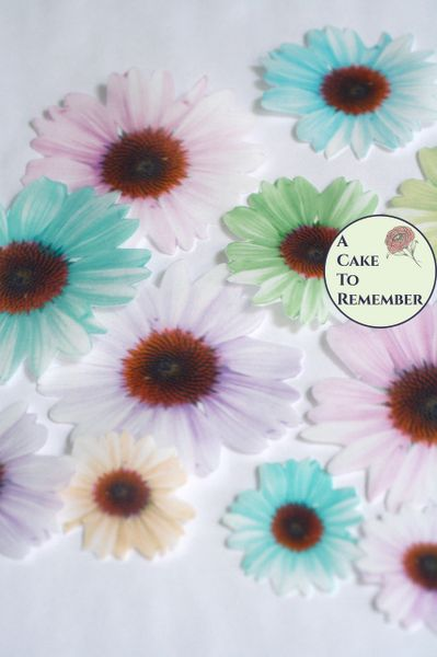 12 pastel daisies edible flowers wafer paper cupcake toppers
