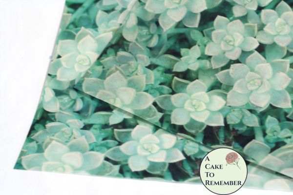 Succulents edible wafer paper- 3 edible sheets for cake wraps