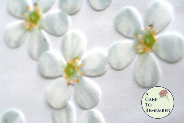 48 wafer white edible flowers cupcake toppers