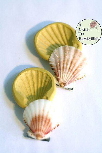 Clam shell set of seashell molds for cake decorating. M5261