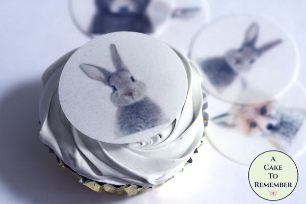 Baby woodland forest animals edible wafer paper cupcake toppers