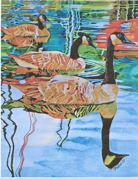 MacDonald's Geese