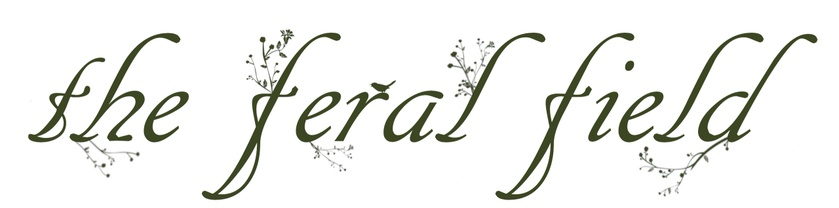 The Feral Field - Farm, Floral, & Apothecary