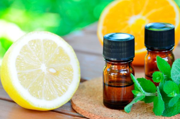 OCP&E Essential Oils, Citrus Mint