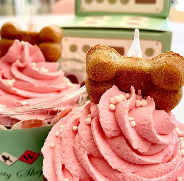 Birthday Dog Cupcake by Bow Wow Bakery