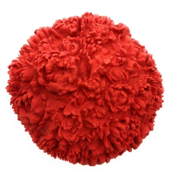 Large Flower Squeaky Ball by Lanco