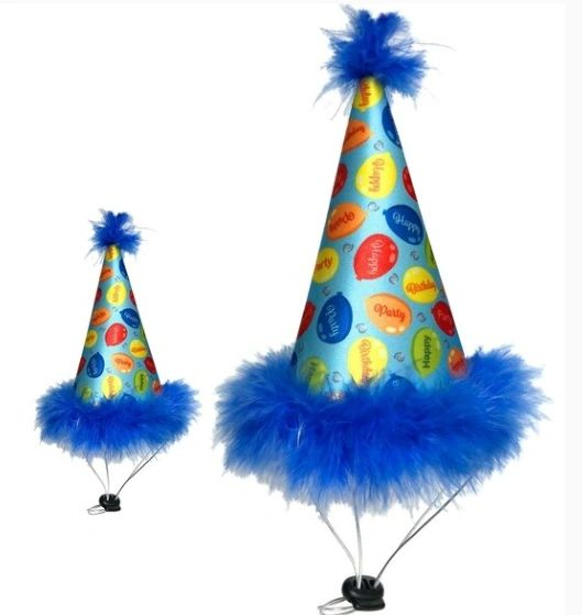 Blue Pet Birthday Party Hat by Huxley & Kent