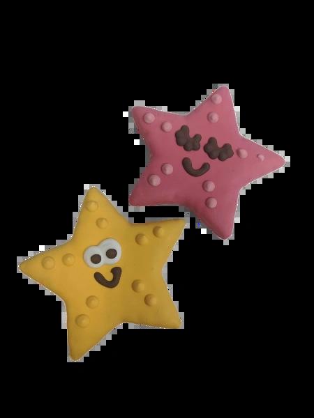 Starfish Gourmet Cookies by Bosco & Roxy's