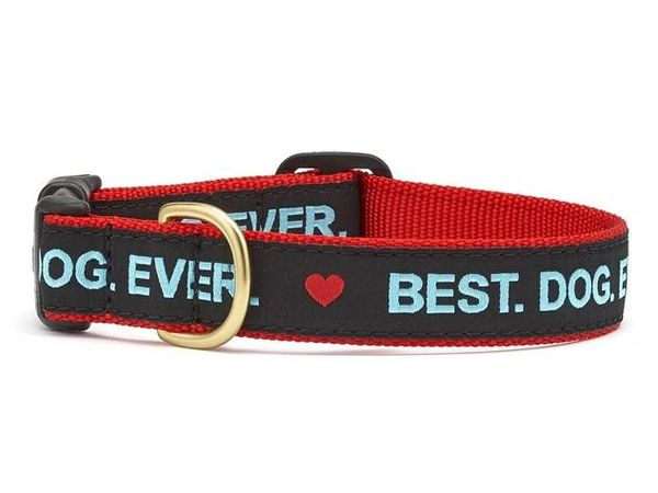 Best Dog Ever Dog Collars by Up Country Inc