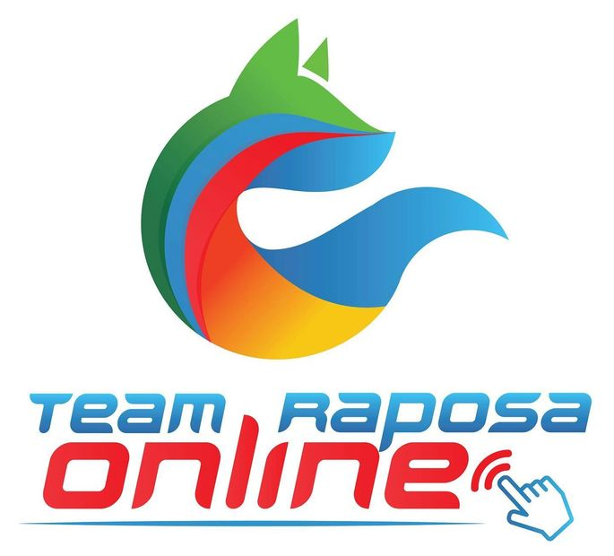 Team Raposa the Best online Taekwondo, Kickboxing, Karate and Fitness classes for kids and families.
