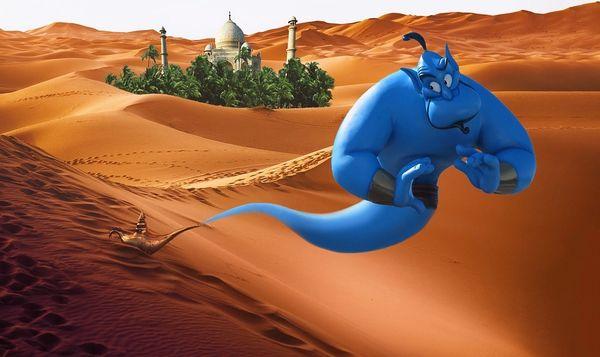 Aladdin's Wish