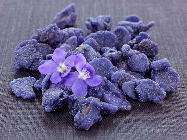 Candied Violets **