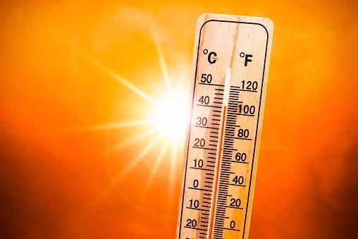 Feel The Heat (LUSH Fever type)