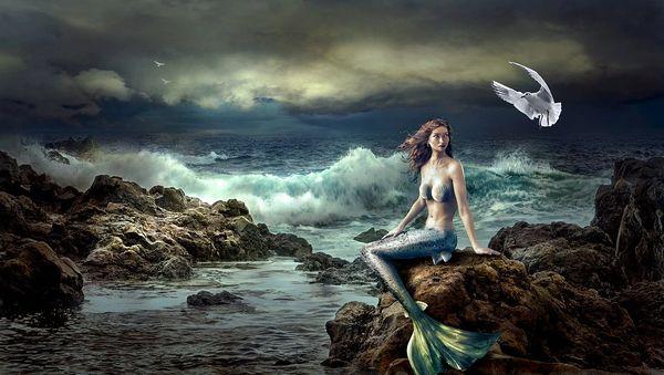 Mermaid Lagoon (BBW type)
