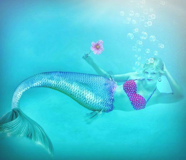 Twisted Mermaid