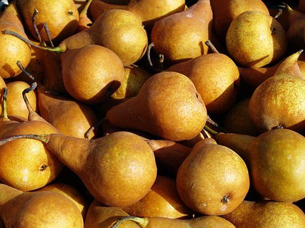 Vanilla Pear (BBW Yuletide Vanilla Pear type)