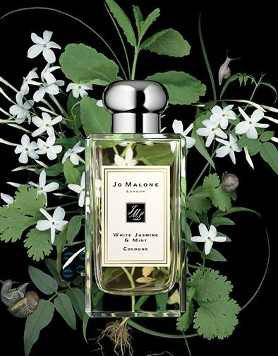 White Jasmine & Mint (Jo Malone type)