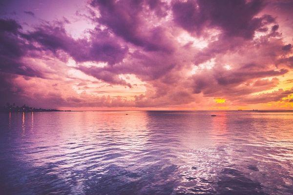 Lavender Seas (compare to BBW Lavender Sea)