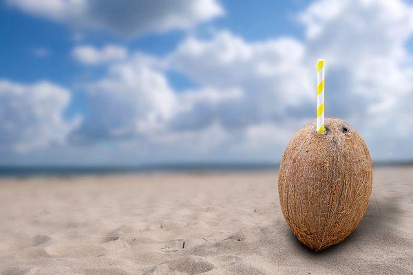 Coconut Vanilla (compare to Mancera's Coco Vanille) (PLTM)