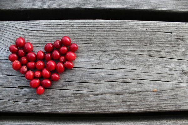 Lingonberry Preserves & Dry Woods (PLTM)