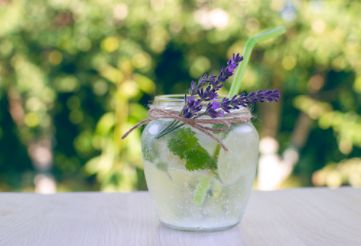Lime Blossoms & Lavender (compare to Antica Farmacista Lavender & Lime Blossom) (PLTM)