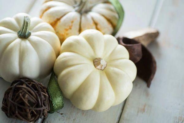 White Pumpkin **
