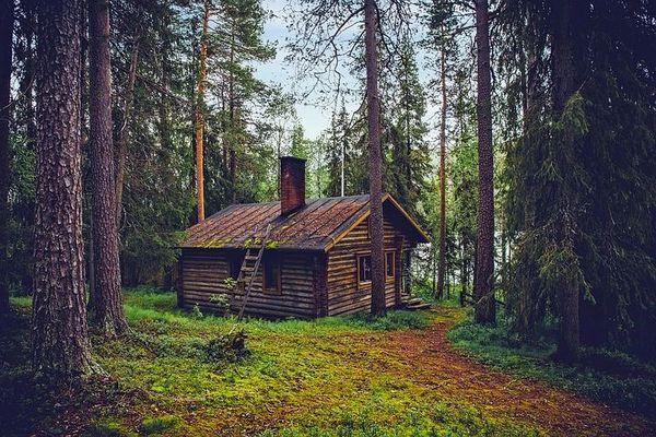 Cabin in the Woods (compareTo BBW's Cozy Cabin)
