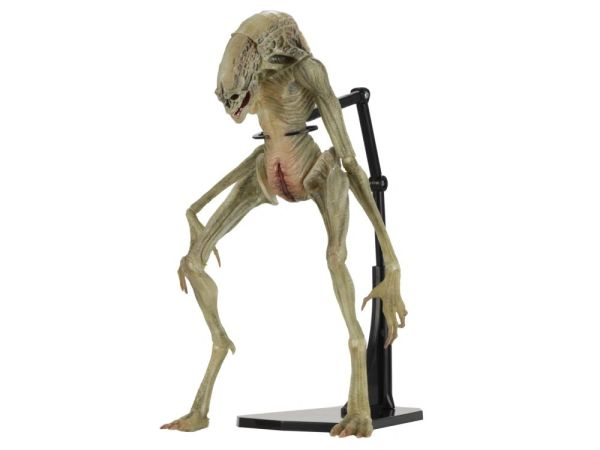 NECA Alien Resurrection Deluxe Newborn Action Figure