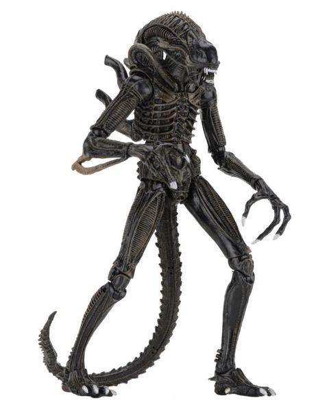 Aliens Ultimate Warrior (Brown) Action Figure