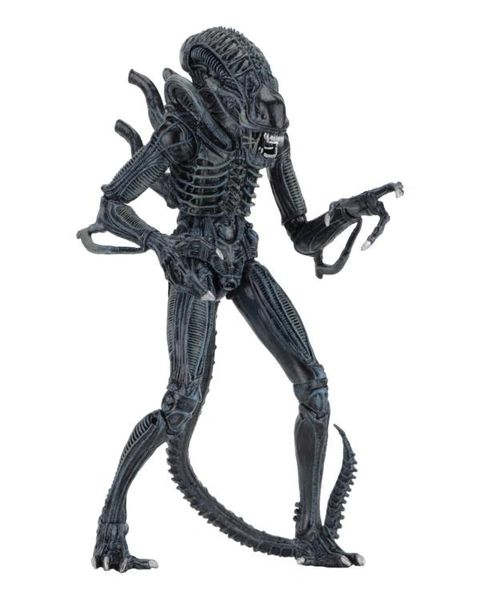 Aliens Ultimate Warrior (Blue) Action Figure