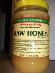 Y.S. Eco Bee Farms Raw Honey 22oz