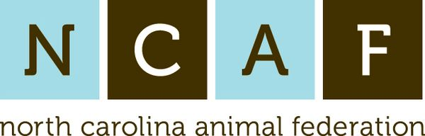 Social Media and Animal Welfare Course