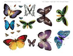 3601 Flutterby Digi Stamp