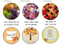 3571 ATC Coin Fall Splendor Digital