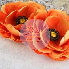 Prima Aria Orange