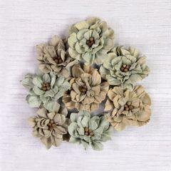 Serenade Sage flowers