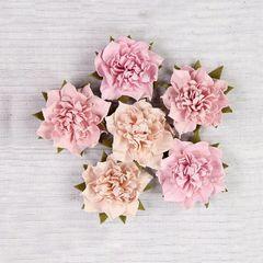 Camelia Blush flowers
