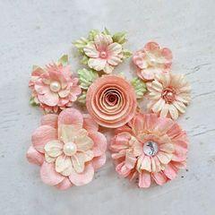 Argyle Coronation Flowers