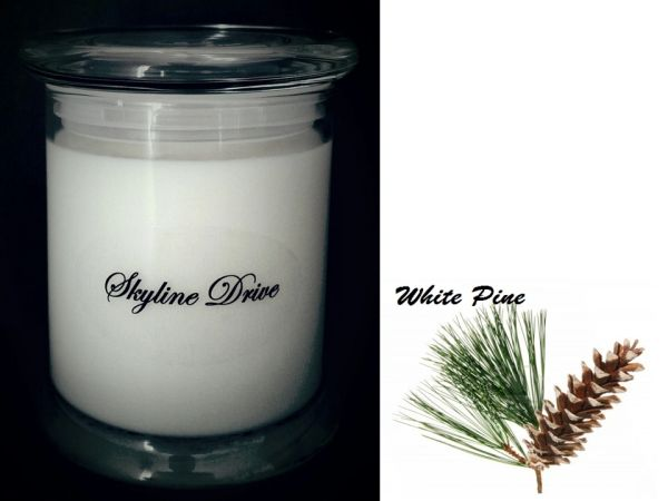 Skyline Drive (White Pine)