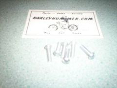 2638 Cadmium Tail Light Lens Screw