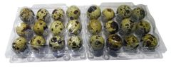 Clear Plastic Quail Egg Boxes - Pack of 100