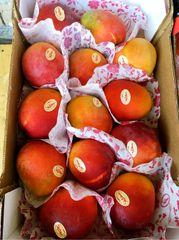 Pro_Israel Jumbo Mango 2 counts/bag【热卖新品】以色列太阳芒2颗