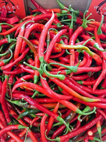 Local Red chilli Pepper 本地新鲜红辣椒